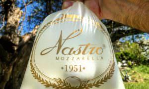 https://www.salernocitta.com/wp-content/uploads/2019/06/foto-logo-e1561187768349.jpg